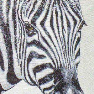 zebra-padi-munane-roosa-roheline-hobune