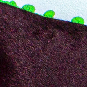 zebra-padi-munane-roosa-roheline-lilla-karvane